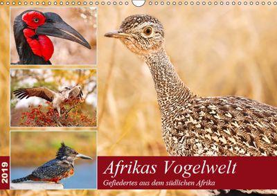 Afrikas Vogelwelt 2019 (Wandkalender 2019 DIN A3 quer), Wibke Woyke