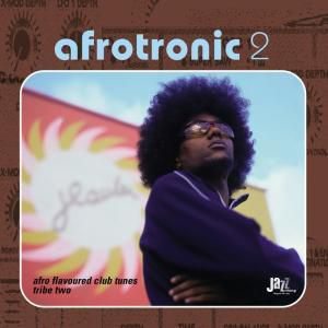 Afrotronic 2 - Afro Flavoured, Diverse Interpreten