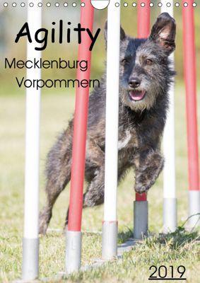 Agility Mecklenburg Vorpommern (Wandkalender 2019 DIN A4 hoch), Jill Langer