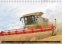 Agrarbilder Schaumburg 2019 (Tischkalender 2019 DIN A5 quer) - Produktdetailbild 1