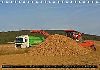 Agrarbilder Schaumburg 2019 (Tischkalender 2019 DIN A5 quer) - Produktdetailbild 11
