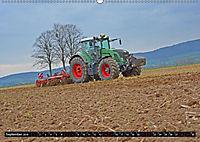 Agrarbilder Schaumburg 2019 (Wandkalender 2019 DIN A2 quer) - Produktdetailbild 6