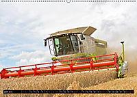 Agrarbilder Schaumburg 2019 (Wandkalender 2019 DIN A2 quer) - Produktdetailbild 7
