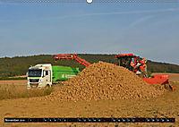 Agrarbilder Schaumburg 2019 (Wandkalender 2019 DIN A2 quer) - Produktdetailbild 11