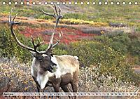 Alaska und Kanada (Tischkalender 2019 DIN A5 quer) - Produktdetailbild 4