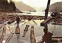 Alaska - Wildnis am Rande der Welt - Produktdetailbild 7