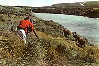 Alaska - Wildnis am Rande der Welt - Produktdetailbild 6