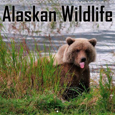 Alaskan Wildlife (Wall Calendar 2019 300 × 300 mm Square), Dieter-M. Wilczek