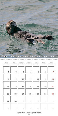 Alaskan Wildlife (Wall Calendar 2019 300 × 300 mm Square) - Produktdetailbild 4