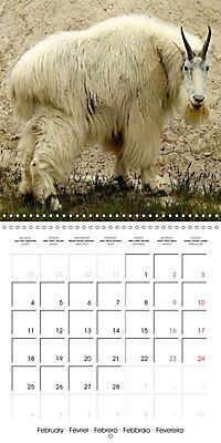 Alaskan Wildlife (Wall Calendar 2019 300 × 300 mm Square) - Produktdetailbild 2