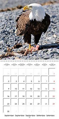 Alaskan Wildlife (Wall Calendar 2019 300 × 300 mm Square) - Produktdetailbild 9
