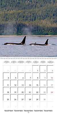 Alaskan Wildlife (Wall Calendar 2019 300 × 300 mm Square) - Produktdetailbild 11