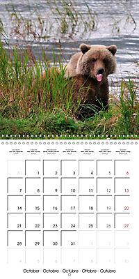 Alaskan Wildlife (Wall Calendar 2019 300 × 300 mm Square) - Produktdetailbild 10