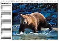 ALASKAS KENAI HALBINSEL (Tischkalender 2019 DIN A5 quer) - Produktdetailbild 9