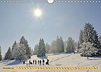 Albstadt - Bilder der Stadtteile (Wandkalender 2019 DIN A4 quer) - Produktdetailbild 12
