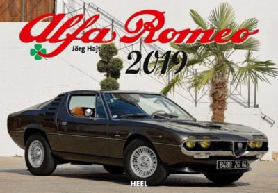 Alfa Romeo 2019, Jörg Hajt