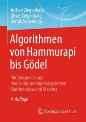 Algorithmen von Hammurapi bis Gödel, Jochen Ziegenbalg, Oliver Ziegenbalg, Bernd Ziegenbalg