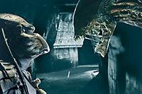 Alien vs. Predator - Produktdetailbild 1