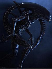 Alien vs. Predator - Produktdetailbild 8