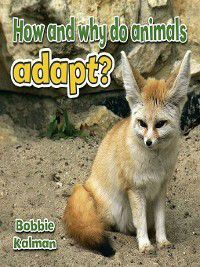 All About Animals Close-Up: How and why do animals adapt?, Bobbie Kalman