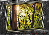 All in a framework - sun in the forest / UK-Version (Wall Calendar 2019 DIN A3 Landscape) - Produktdetailbild 4