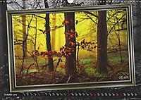 All in a framework - sun in the forest / UK-Version (Wall Calendar 2019 DIN A3 Landscape) - Produktdetailbild 10