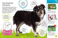 Alles über deinen Hund - Produktdetailbild 3