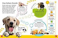 Alles über deinen Hund - Produktdetailbild 5