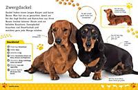 Alles über deinen Hund - Produktdetailbild 7