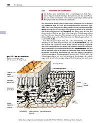 Allgemeine und molekulare Botanik - Produktdetailbild 9