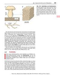 Allgemeine und molekulare Botanik - Produktdetailbild 6