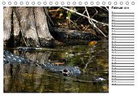 ALLIGATOREN IN FLORIDA (Tischkalender 2019 DIN A5 quer) - Produktdetailbild 2