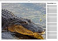 ALLIGATOREN IN FLORIDA (Wandkalender 2019 DIN A3 quer) - Produktdetailbild 11