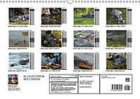 ALLIGATOREN IN FLORIDA (Wandkalender 2019 DIN A3 quer) - Produktdetailbild 13