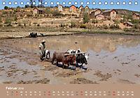 Alltag in Madagaskar (Tischkalender 2019 DIN A5 quer) - Produktdetailbild 2
