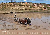 Alltag in Madagaskar (Wandkalender 2019 DIN A3 quer) - Produktdetailbild 2