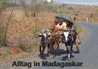 Alltag in Madagaskar (Wandkalender 2019 DIN A3 quer), Willy Brüchle