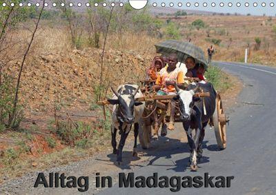 Alltag in Madagaskar (Wandkalender 2019 DIN A4 quer), Willy Brüchle
