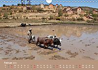 Alltag in Madagaskar (Wandkalender 2019 DIN A4 quer) - Produktdetailbild 2
