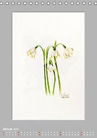 Alpenblumen Aquarelle aus Tirol (Tischkalender 2019 DIN A5 hoch) - Produktdetailbild 1