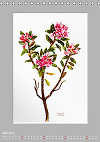Alpenblumen Aquarelle aus Tirol (Tischkalender 2019 DIN A5 hoch) - Produktdetailbild 7