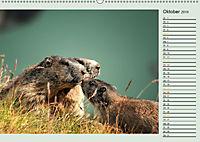 Am Großglockner - Planer (Wandkalender 2019 DIN A2 quer) - Produktdetailbild 10