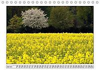 Am Niederrhein. Der Altkreis Moers (Tischkalender 2019 DIN A5 quer) - Produktdetailbild 4