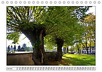 Am Niederrhein. Der Altkreis Moers (Tischkalender 2019 DIN A5 quer) - Produktdetailbild 6