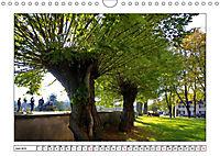 Am Niederrhein. Der Altkreis Moers (Wandkalender 2019 DIN A4 quer) - Produktdetailbild 6