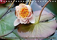 Am Seerosenteich (Tischkalender 2019 DIN A5 quer) - Produktdetailbild 5
