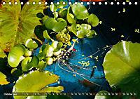 Am Seerosenteich (Tischkalender 2019 DIN A5 quer) - Produktdetailbild 10
