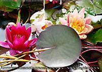 Am Seerosenteich (Wandkalender 2019 DIN A2 quer) - Produktdetailbild 2
