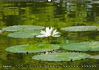 Am Seerosenteich (Wandkalender 2019 DIN A2 quer) - Produktdetailbild 8