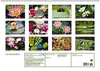 Am Seerosenteich (Wandkalender 2019 DIN A2 quer) - Produktdetailbild 13